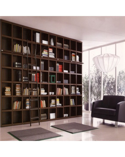 Bibliothèque RICCI